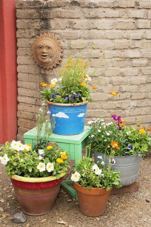 https://imgc.allpostersimages.com/img/posters/tucson-botanical-gardens-garden-entry-tucson-arizona-usa_u-L-PN6Y7T0.jpg?p=0
