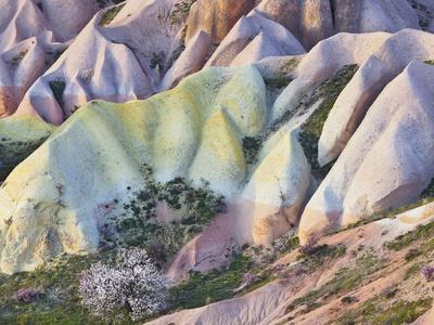 https://imgc.allpostersimages.com/img/posters/tuff-stone-erosion-in-the-rose-valley-close-gshreme-cappadocia-anatolia-turkey_u-L-Q11YLLS0.jpg?p=0
