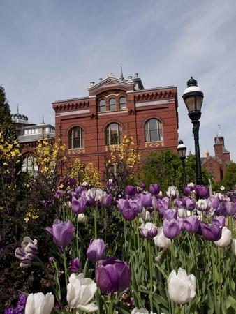 https://imgc.allpostersimages.com/img/posters/tulips-at-the-smithsonian-washington-dc-usa-district-of-columbia_u-L-PHAD9U0.jpg?p=0