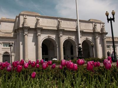 https://imgc.allpostersimages.com/img/posters/tulips-by-union-station-washington-dc-usa-district-of-columbia_u-L-PHADAH0.jpg?p=0