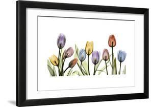 Tulipscape Portrait
