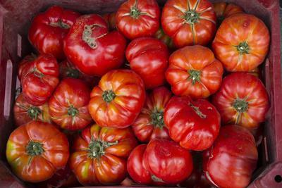 https://imgc.allpostersimages.com/img/posters/turkey-gaziantep-informally-called-antep-fresh-vegetables-and-fruits-are-plentiful-tomatoes_u-L-Q12T5N40.jpg?p=0