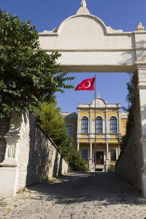https://imgc.allpostersimages.com/img/posters/turkey-safranbolu-government-building-with-red-turkish-flag-flying_u-L-Q12T3R60.jpg?p=0