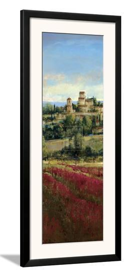 Tuscan Harvest I-P^ Patrick-Framed Art Print