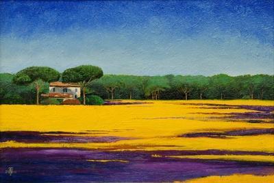 https://imgc.allpostersimages.com/img/posters/tuscan-landcape-2010_u-L-PJH1680.jpg?p=0