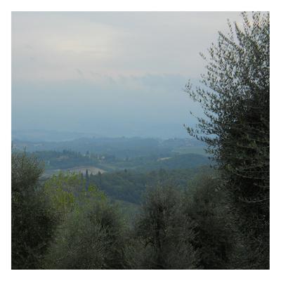 https://imgc.allpostersimages.com/img/posters/tuscan-view_u-L-F6FZJN0.jpg?p=0