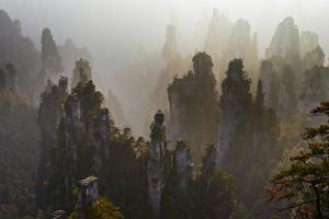 China, Hunan Province, Zhangjiajie National Forest Park by Tuul And Bruno Morandi