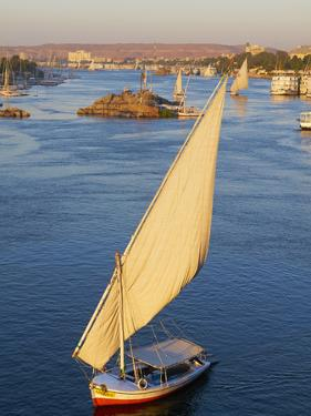 Feluccas on the River Nile, Aswan, Egypt, North Africa, Africa by Tuul