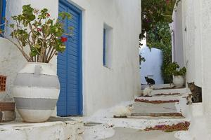Hora, Serifos Island, Cyclades, Greek Islands, Greece, Europe by Tuul