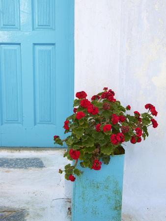 Red Geraniums, Chora, Amorgos, Cyclades, Aegean, Greek Islands, Greece, Europe