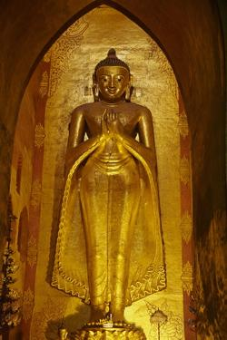 Statue of the Buddha, Patho Ananda Temple, Bagan (Pagan), Myanmar (Burma), Asia by Tuul