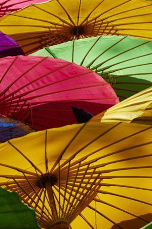 Umbrellas at Borsang Handicraft Village, Chiang Mai, Thailand, Southeast Asia, Asia by Tuul