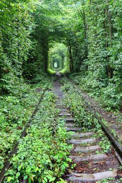 Tunnel of Love by tverkhovinets