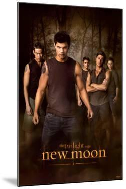 Twilight - New Moon