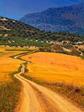 Twisty Road, Near Casabermeja, Malaga Province, Andalusia, Spain