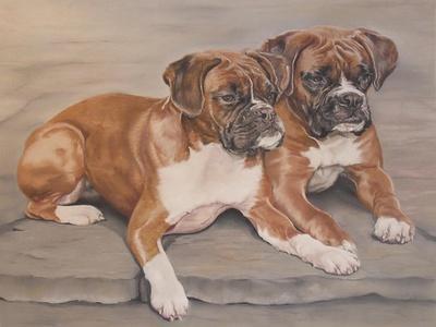 https://imgc.allpostersimages.com/img/posters/two-boxer-dogs_u-L-PYLYB50.jpg?p=0