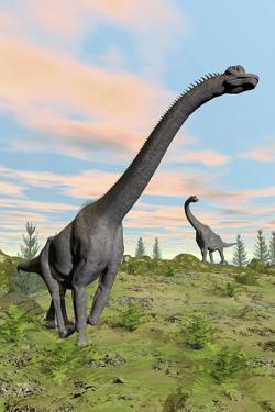 Two Brachiosaurus Dinosaurs in a Prehistoric Environment