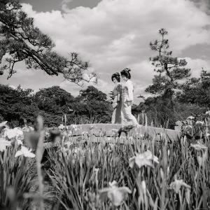 Two Geishas Cross a Small Bridge in the Iris Garden at the Doors to Tokyo