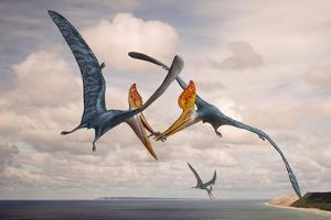 Two Geosternbergia Pterosaurs Fighting over Small Fish