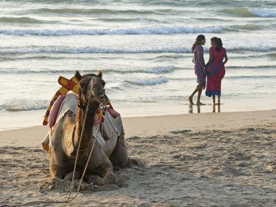 https://imgc.allpostersimages.com/img/posters/two-girls-on-beach-at-dusk-camel-waiting-ganpatipule-karnataka-india-asia_u-L-P91HBJ0.jpg?artPerspective=n
