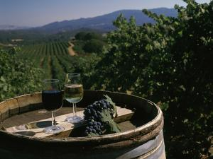 Two Glasses of Wine on Barrel at Kunde Estates Winery, Sonoma Valley, Sonoma County, California
