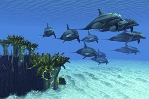 Two Pennant Fish Scamper Away from a Pod of Striped Dolphins