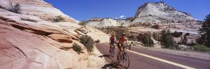 Two People Cycling on the Road, Zion National Park, Utah, USA