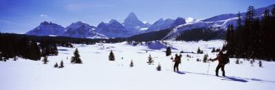 Two People Skiing, Mt Assiniboine, Mt Assiniboine Provincial Park, British Columbia, Canada
