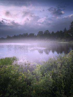 Foggy Sunset beside a Lake by Tyler Gray