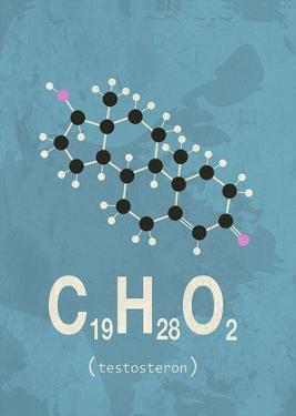 Molecule Testosterone by TypeLike