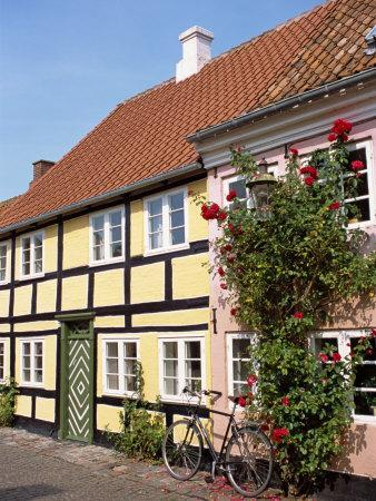 https://imgc.allpostersimages.com/img/posters/typical-street-of-pastel-houses-aeroskobing-aero-denmark-scandinavia-europe_u-L-P7NG8W0.jpg?p=0