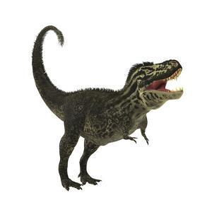 Tyrannosaurus Rex, a Large Predatory Beast of the Cretaceous Period