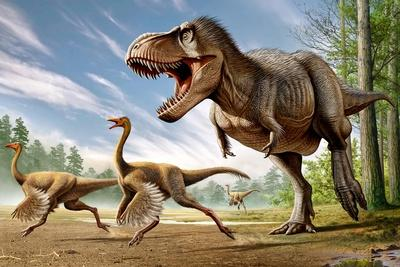 https://imgc.allpostersimages.com/img/posters/tyrannosaurus-rex-attacking-two-struthiomimus-dinosaurs_u-L-PN8EJ80.jpg?p=0