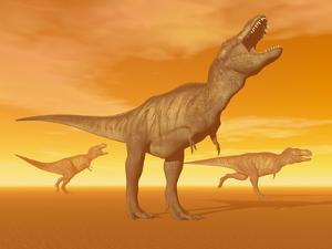 Tyrannosaurus Rex Dinosaurs in an Orange Foggy Desert by Sunset