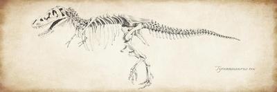 https://imgc.allpostersimages.com/img/posters/tyrannosaurus-rex_u-L-POBKCW0.jpg?p=0