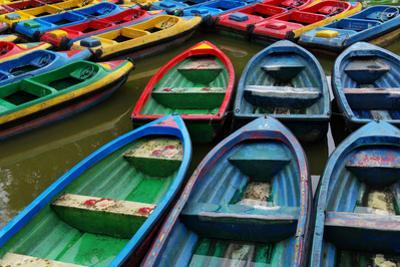 Rowboats at People's Park in Chengdu