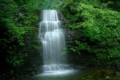 Waterfall in Misty Green Forest of Emei Shan