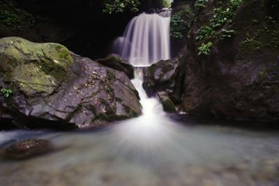 Waterfall in the Forest of Emei Shan