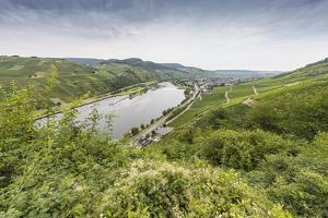 Europe, Germany, Rhineland-Palatinate, District Bernkastel Wittlich by Udo Bernhart