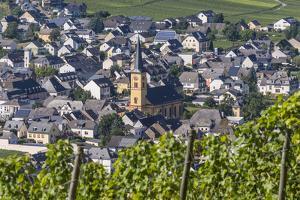 Europe, Germany, Rhineland-Palatinate, Roman Wine Road by Udo Bernhart