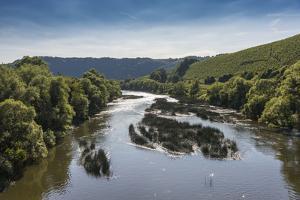 Germany, Rhineland-Palatinate, District Trier-Saarburg, Wine Village Kanzem, River Saar, Scenery by Udo Bernhart