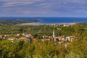 Croatia, Istria, Momjan, Piran Bay, View from San Mauro by Udo Siebig