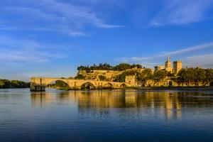 France, Provence, Vaucluse, Avignon, Rh™ne Shore by Udo Siebig