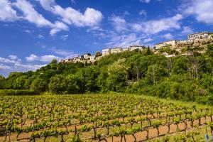France, Provence, Vaucluse, MŽnerbes, View of the Village with Vineyard by Udo Siebig