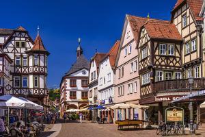 Germany, Bavaria, Lower Franconia, Main-Franconia, Lohr (River) Am Main by Udo Siebig
