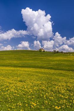 Germany, Bavaria, Upper Bavaria, FŸnfseenland, Jenhausen by Udo Siebig