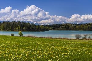 Germany, Bavaria, Upper Bavaria, Pfaffenwinkel, Osterseen by Udo Siebig
