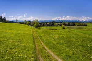 Germany, Bavaria, Upper Bavaria, Tšlzer Land (Area), MŸnsing by Udo Siebig