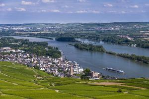 Germany, Hesse, Rheingau (Region), R?desheim Am Rhein (Town), View of the Town with Vineyards by Udo Siebig