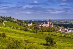 Germany, Rhineland-Palatinate, Rheinhessen Region (Rhine-Hesse), Oppenheim, Vineyards by Udo Siebig